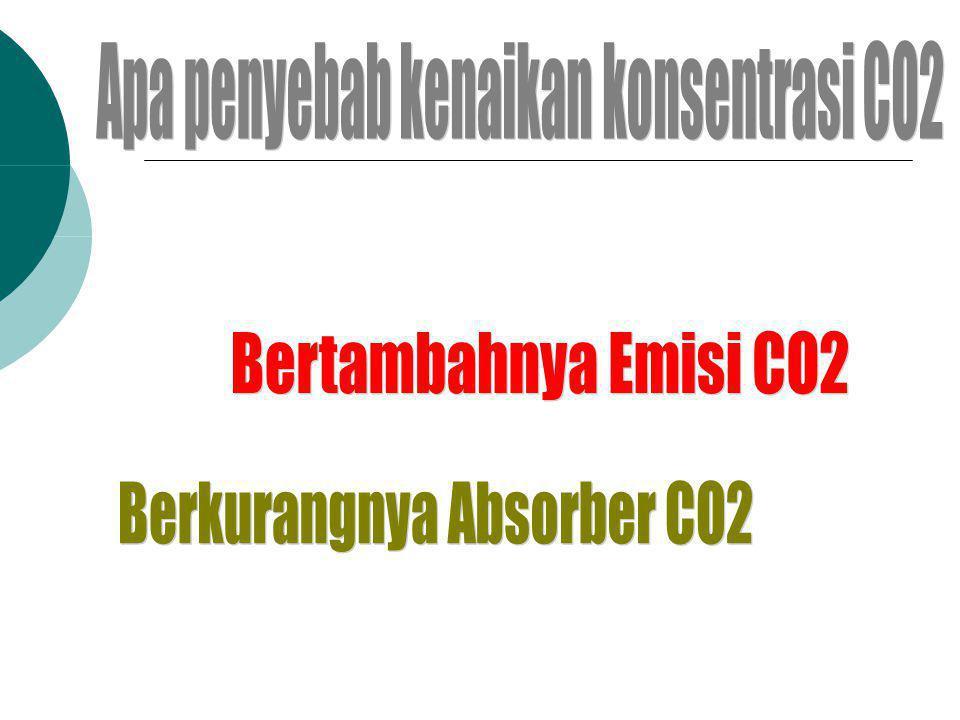 Apa penyebab kenaikan konsentrasi CO2