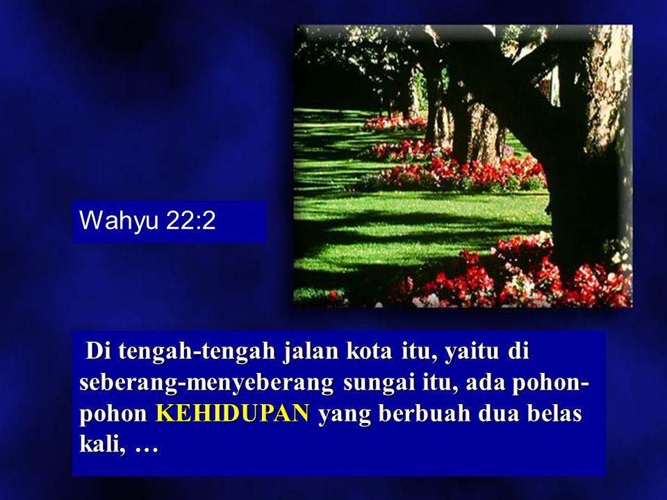 Wahyu 22:2 Di tengah-tengah jalan kota itu, yaitu di seberang-menyeberang sungai itu, ada pohon-pohon KEHIDUPAN yang berbuah dua belas kali, …
