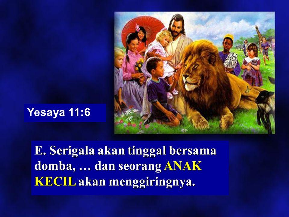 Yesaya 11:6 E. Serigala akan tinggal bersama domba, … dan seorang ANAK KECIL akan menggiringnya.