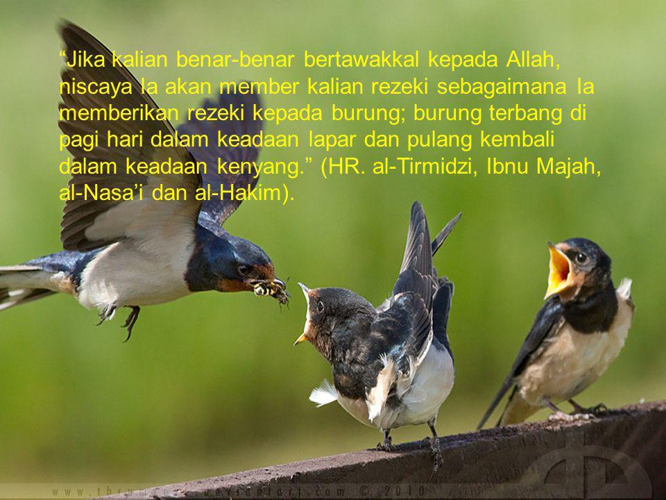 Jika kalian benar-benar bertawakkal kepada Allah, niscaya Ia akan member kalian rezeki sebagaimana Ia memberikan rezeki kepada burung; burung terbang di pagi hari dalam keadaan lapar dan pulang kembali dalam keadaan kenyang. (HR.