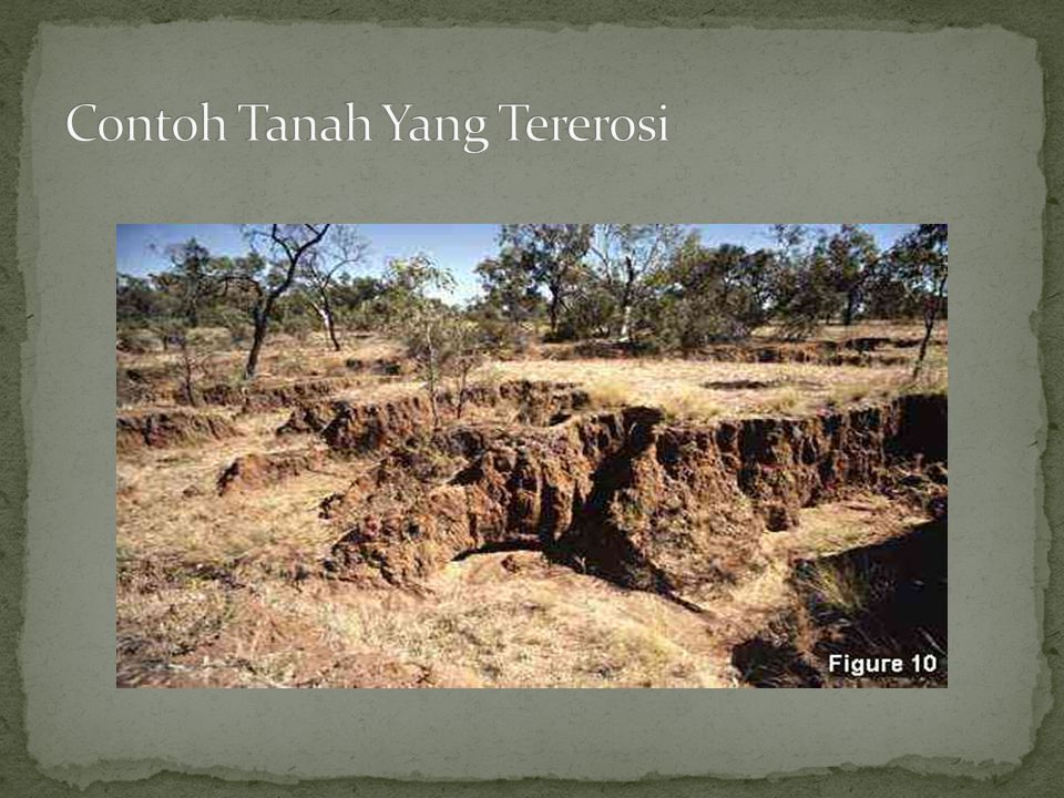 Contoh Tanah Yang Tererosi