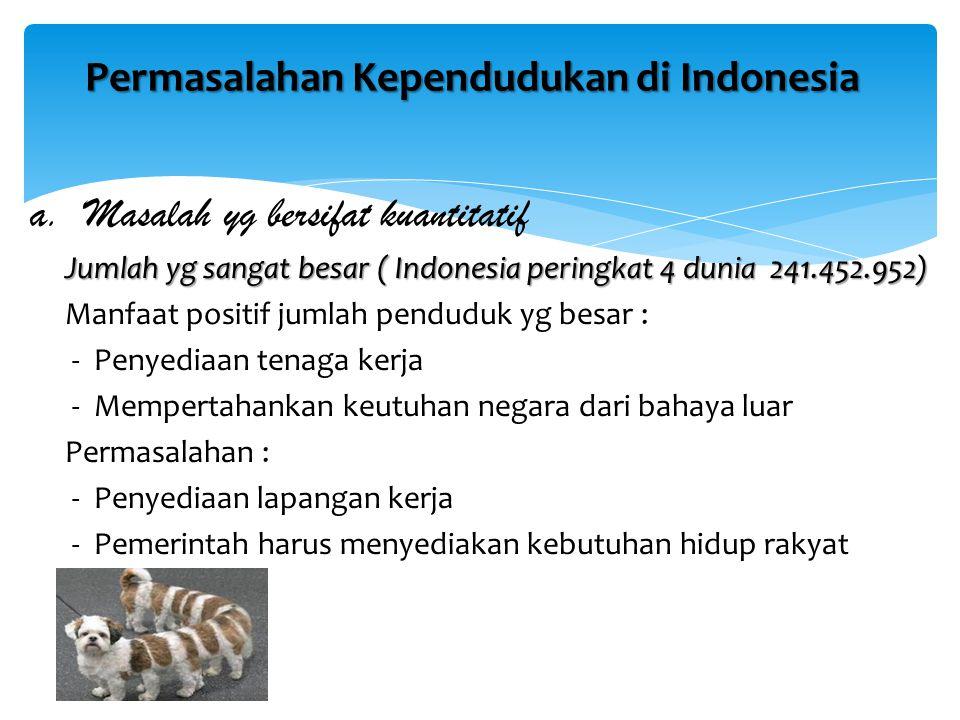 Permasalahan Kependudukan di Indonesia