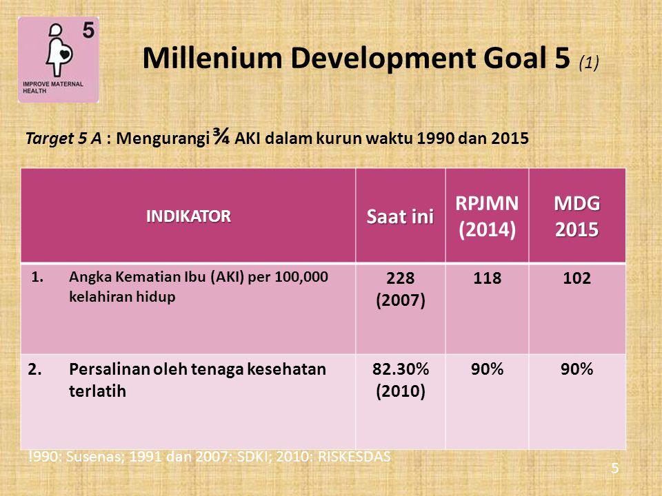 Millenium Development Goal 5 (1)