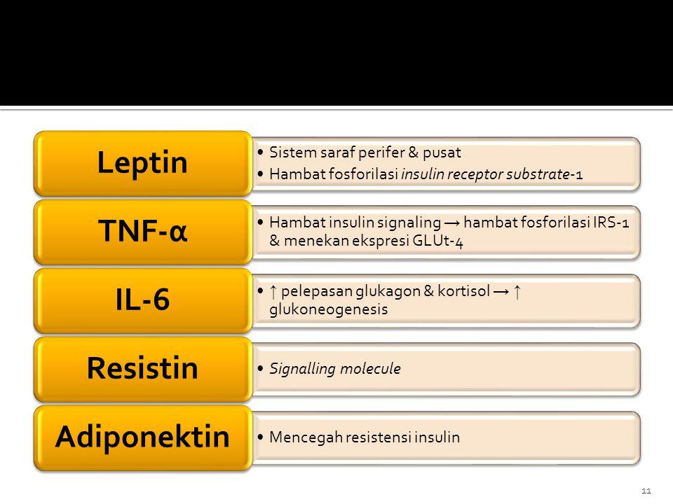 Leptin Sistem saraf perifer & pusat. Hambat fosforilasi insulin receptor substrate-1. TNF-α.