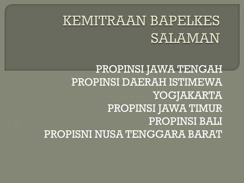 KEMITRAAN BAPELKES SALAMAN