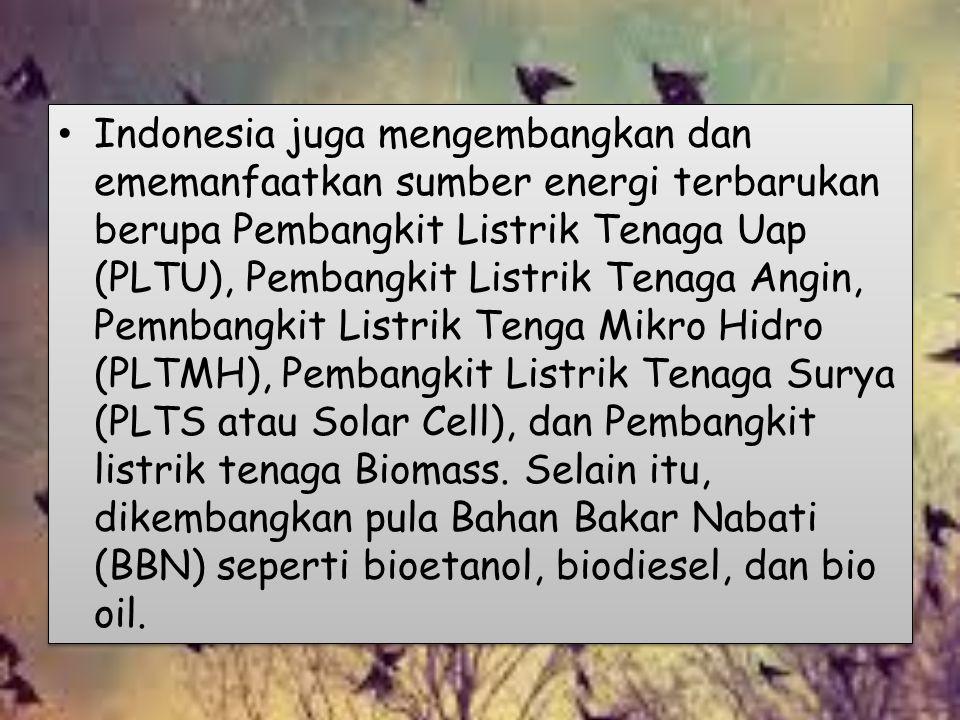 Indonesia juga mengembangkan dan ememanfaatkan sumber energi terbarukan berupa Pembangkit Listrik Tenaga Uap (PLTU), Pembangkit Listrik Tenaga Angin, Pemnbangkit Listrik Tenga Mikro Hidro (PLTMH), Pembangkit Listrik Tenaga Surya (PLTS atau Solar Cell), dan Pembangkit listrik tenaga Biomass.