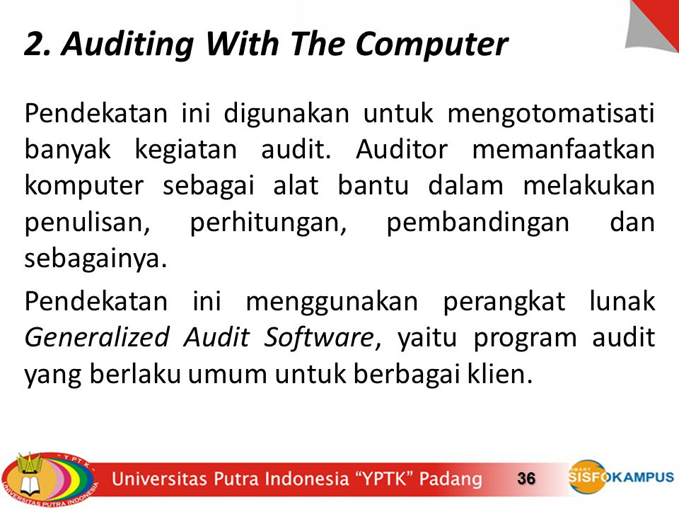 2. Auditing With The Computer