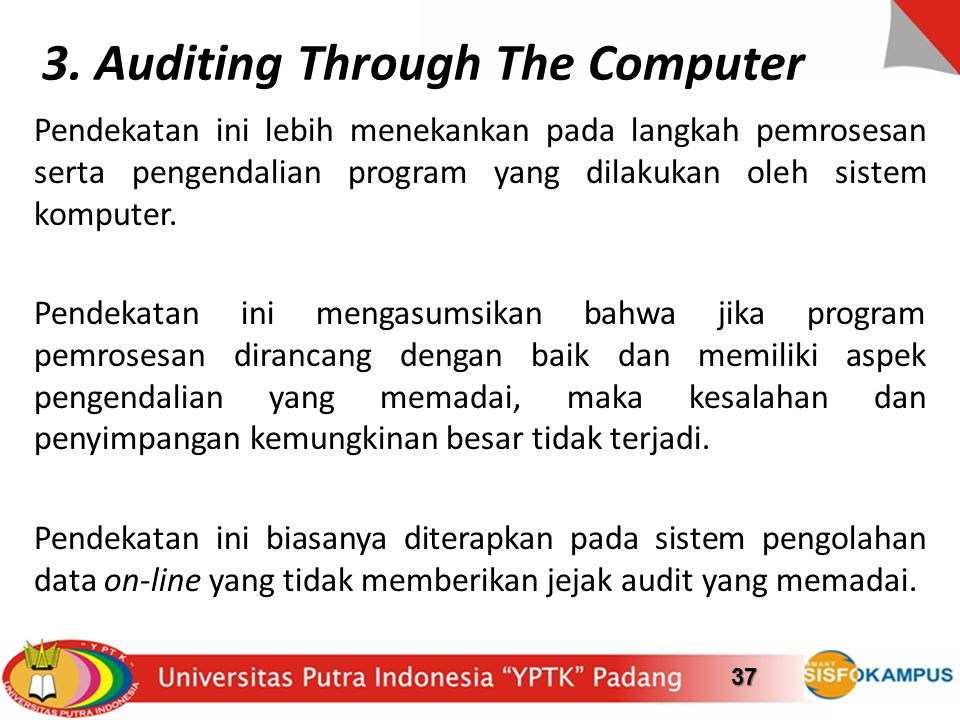 3. Auditing Through The Computer