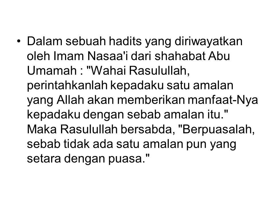 Dalam sebuah hadits yang diriwayatkan oleh Imam Nasaa i dari shahabat Abu Umamah : Wahai Rasulullah, perintahkanlah kepadaku satu amalan yang Allah akan memberikan manfaat-Nya kepadaku dengan sebab amalan itu. Maka Rasulullah bersabda, Berpuasalah, sebab tidak ada satu amalan pun yang setara dengan puasa.