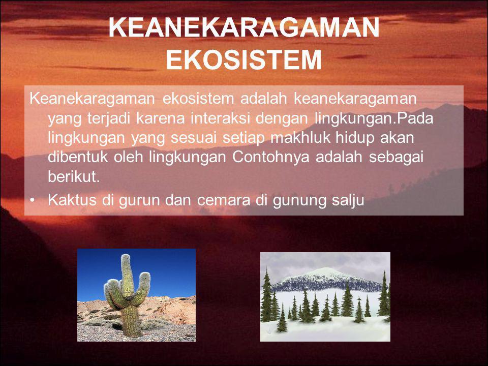 KEANEKARAGAMAN EKOSISTEM