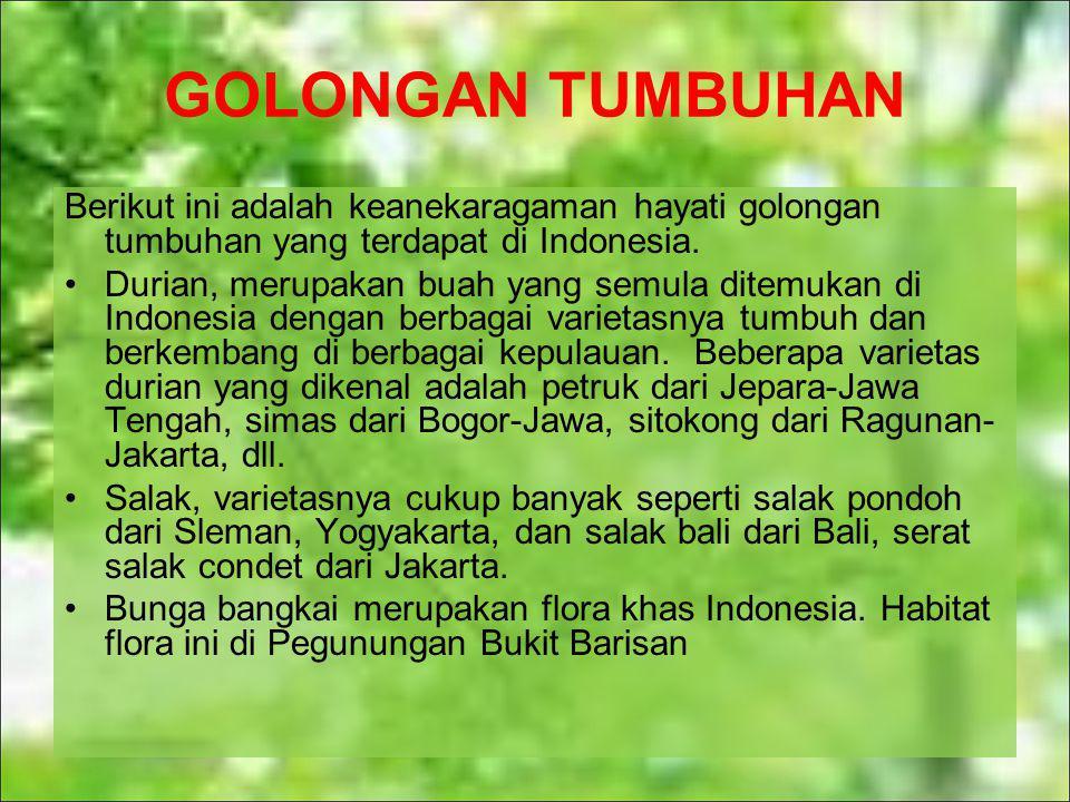 GOLONGAN TUMBUHAN Berikut ini adalah keanekaragaman hayati golongan tumbuhan yang terdapat di Indonesia.