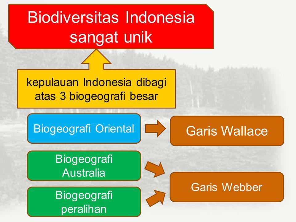 Biodiversitas Indonesia sangat unik