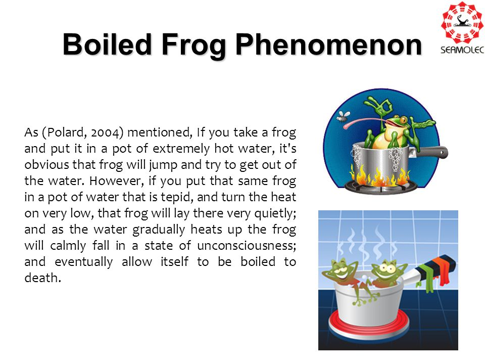 Boiled Frog Phenomenon