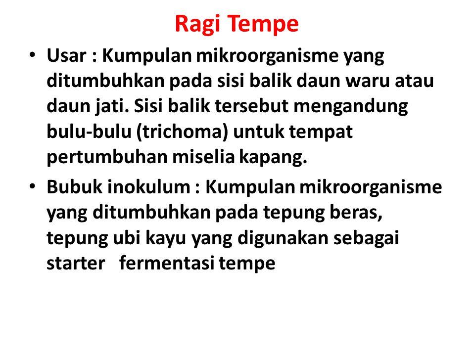 Ragi Tempe