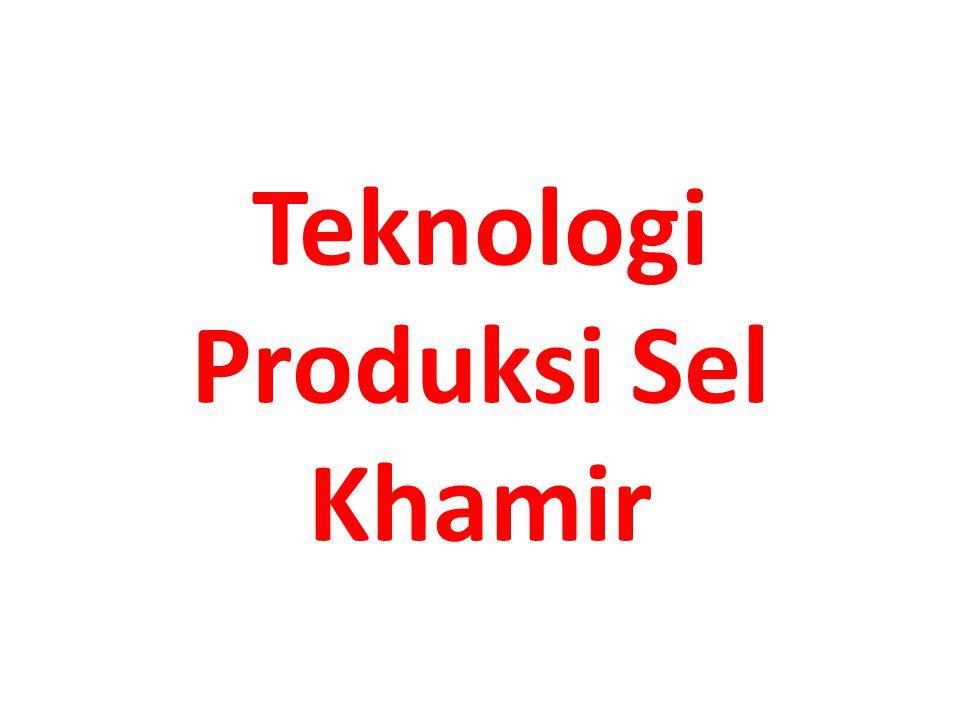 Teknologi Produksi Sel Khamir