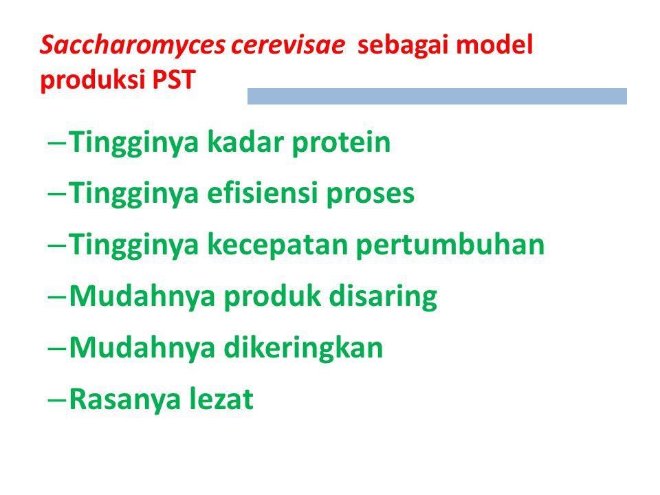 Saccharomyces cerevisae sebagai model produksi PST