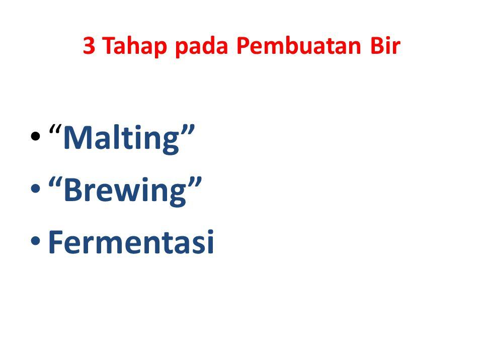 3 Tahap pada Pembuatan Bir