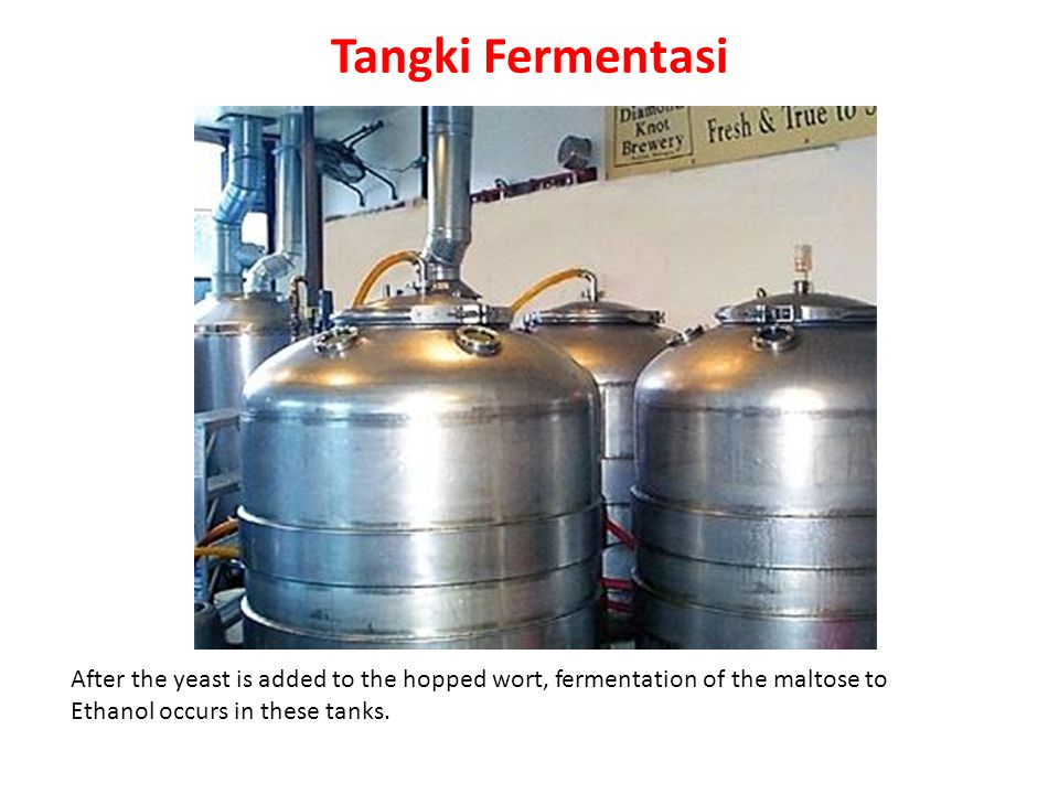 Tangki Fermentasi After the yeast is added to the hopped wort, fermentation of the maltose to.