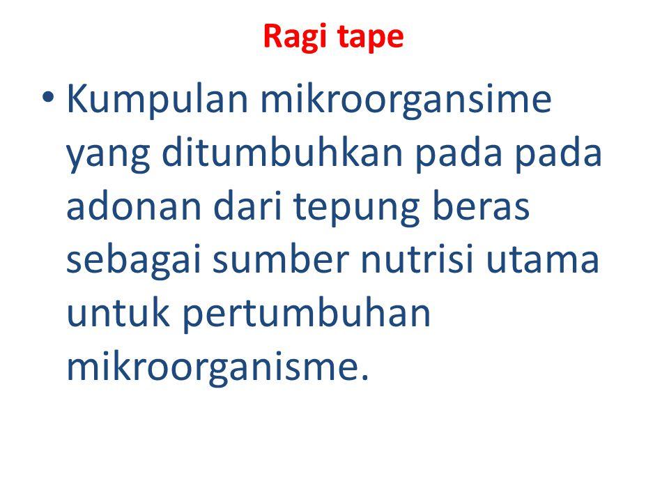 Ragi tape Kumpulan mikroorgansime yang ditumbuhkan pada pada adonan dari tepung beras sebagai sumber nutrisi utama untuk pertumbuhan mikroorganisme.