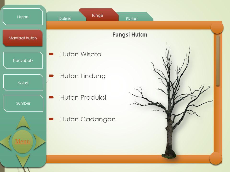 Hutan Wisata Hutan Lindung Hutan Produksi Hutan Cadangan Fungsi Hutan