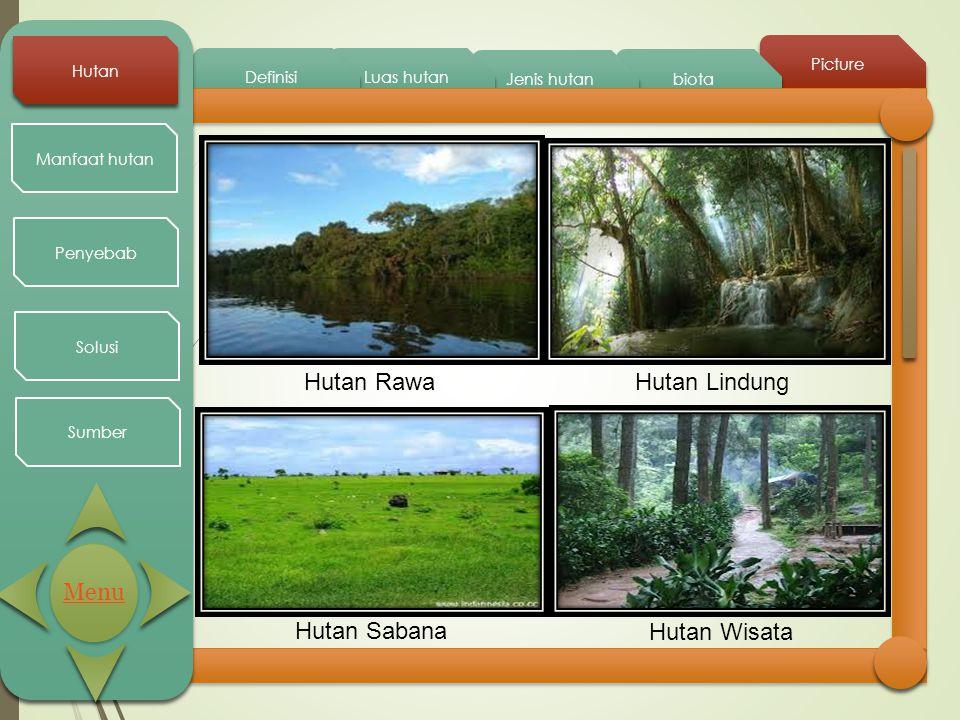 Hutan Rawa Hutan Lindung Menu Hutan Sabana Hutan Wisata Hutan Picture