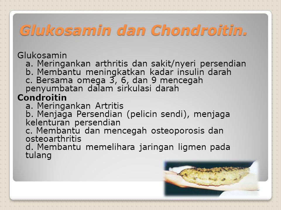 Glukosamin dan Chondroitin.