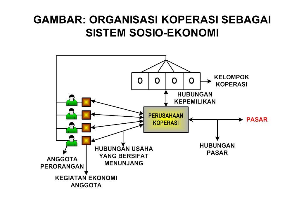 GAMBAR: ORGANISASI KOPERASI SEBAGAI SISTEM SOSIO-EKONOMI