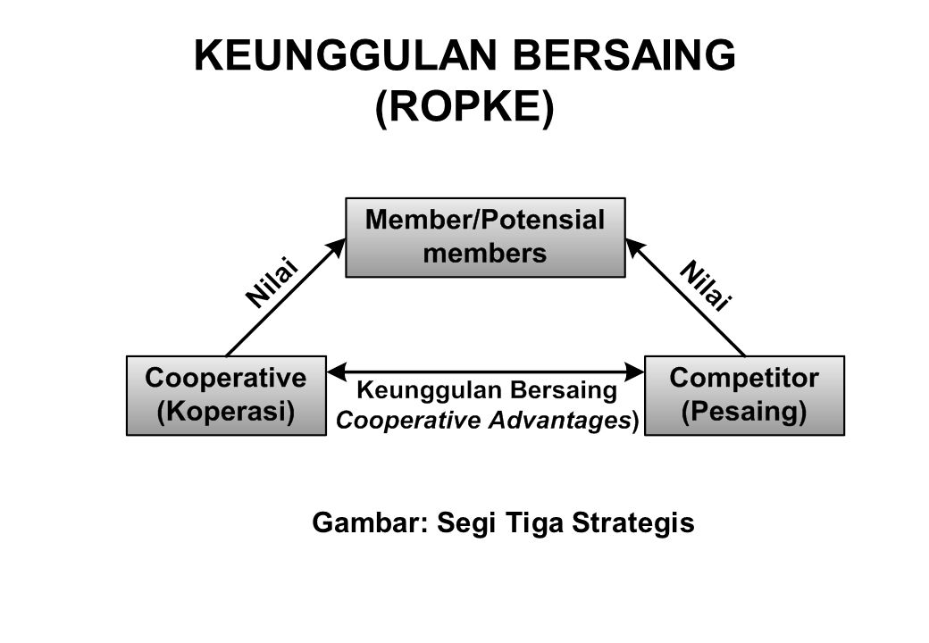 KEUNGGULAN BERSAING (ROPKE)