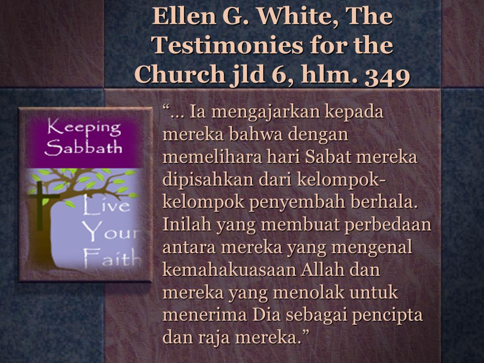 Ellen G. White, The Testimonies for the Church jld 6, hlm. 349