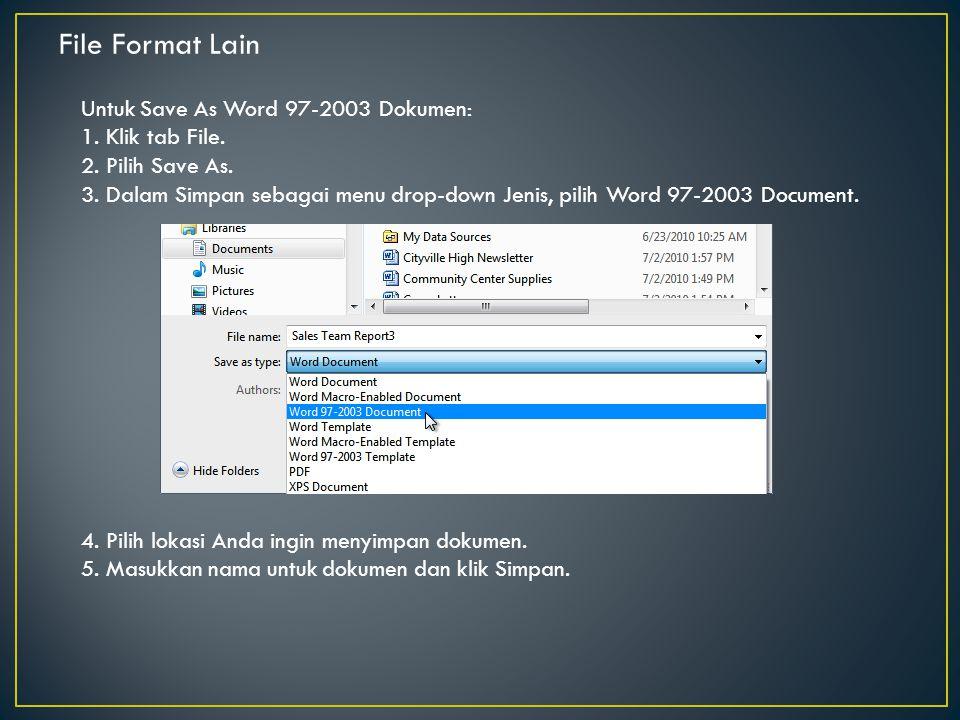 File Format Lain