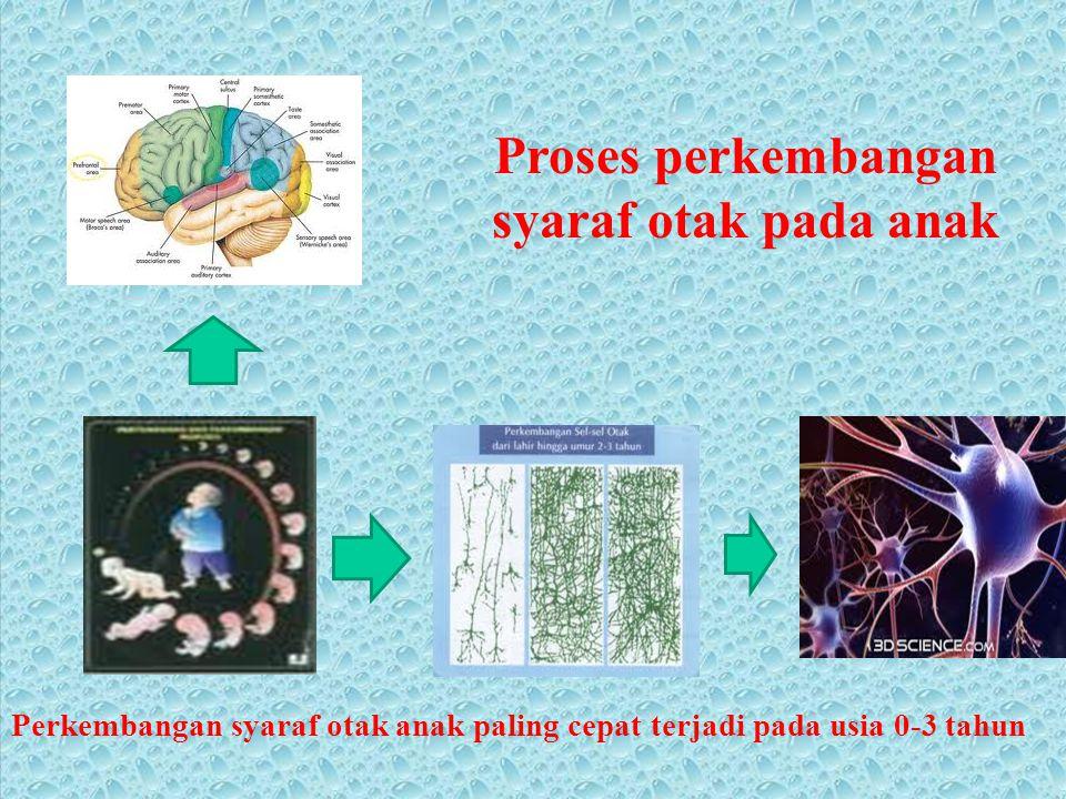 Proses perkembangan syaraf otak pada anak