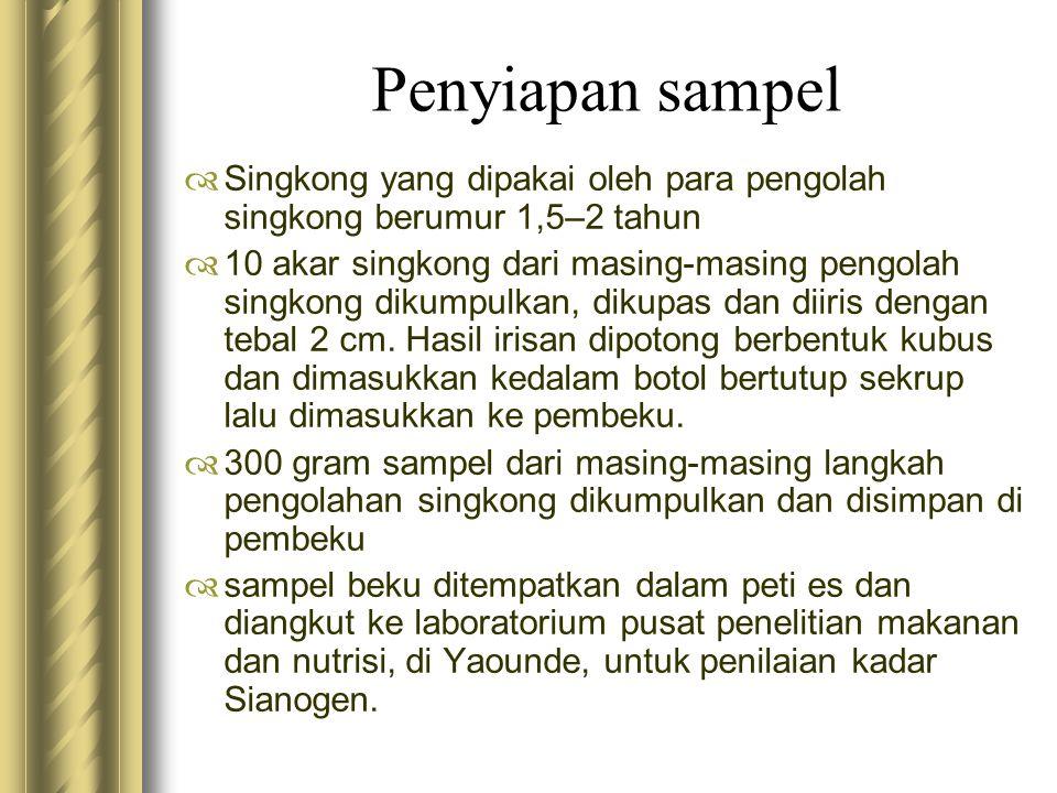 Penyiapan sampel Singkong yang dipakai oleh para pengolah singkong berumur 1,5–2 tahun.