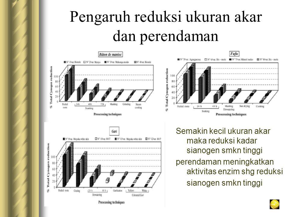 Pengaruh reduksi ukuran akar dan perendaman