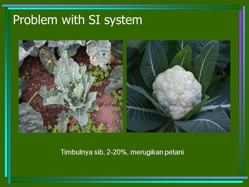 Problem with SI system Timbulnya sib, 2-20%, merugikan petani