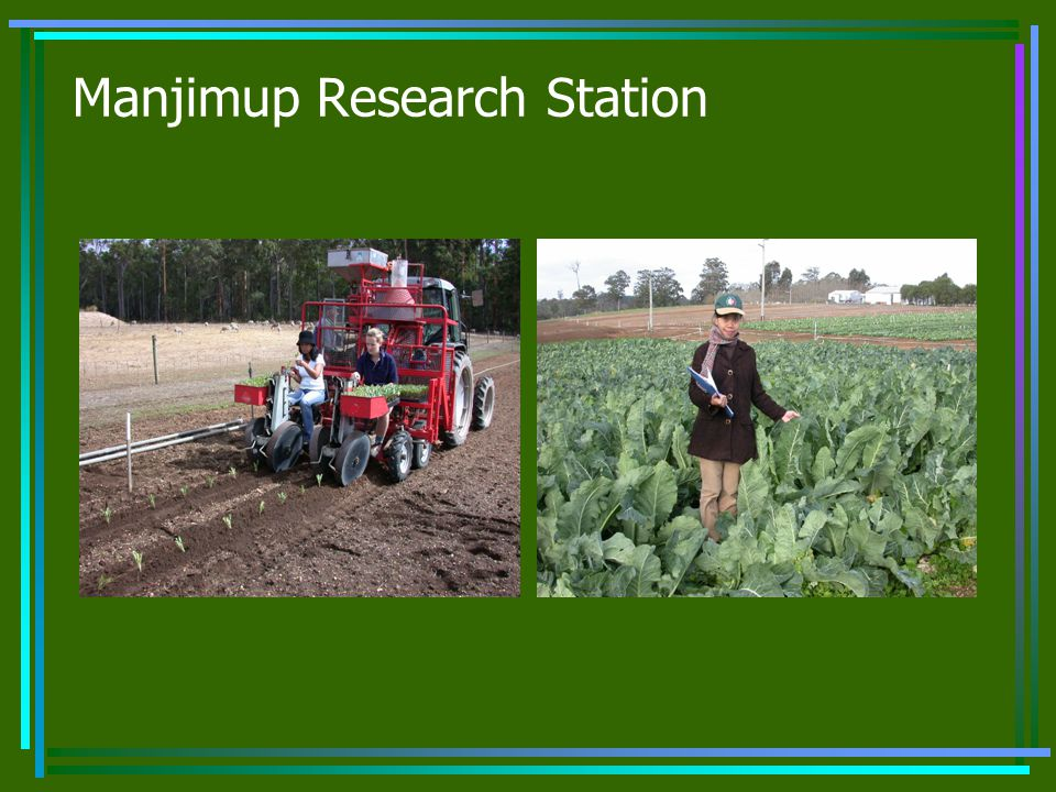 Manjimup Research Station
