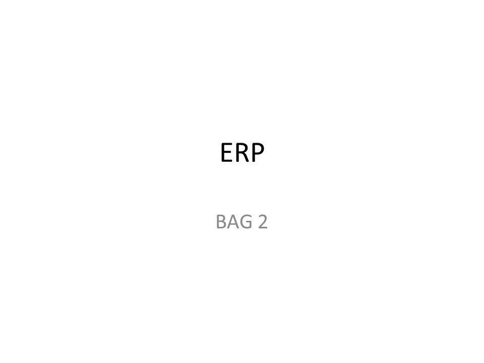 ERP BAG 2