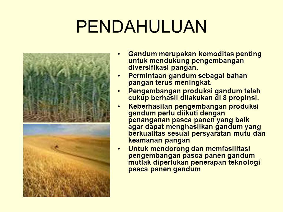 PENDAHULUAN Gandum merupakan komoditas penting untuk mendukung pengembangan diversifikasi pangan.
