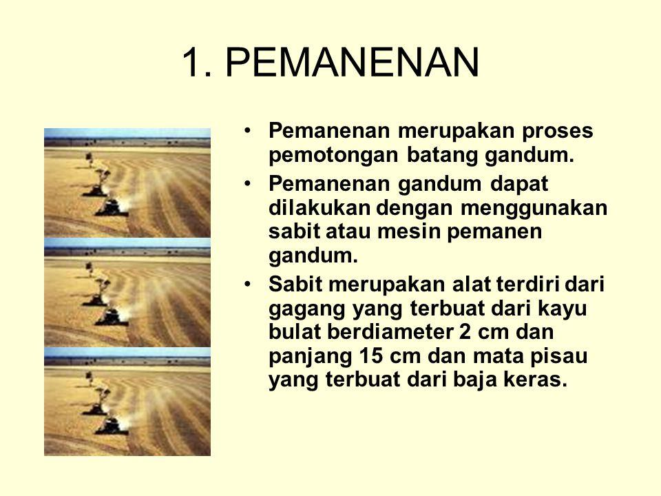 1. PEMANENAN Pemanenan merupakan proses pemotongan batang gandum.