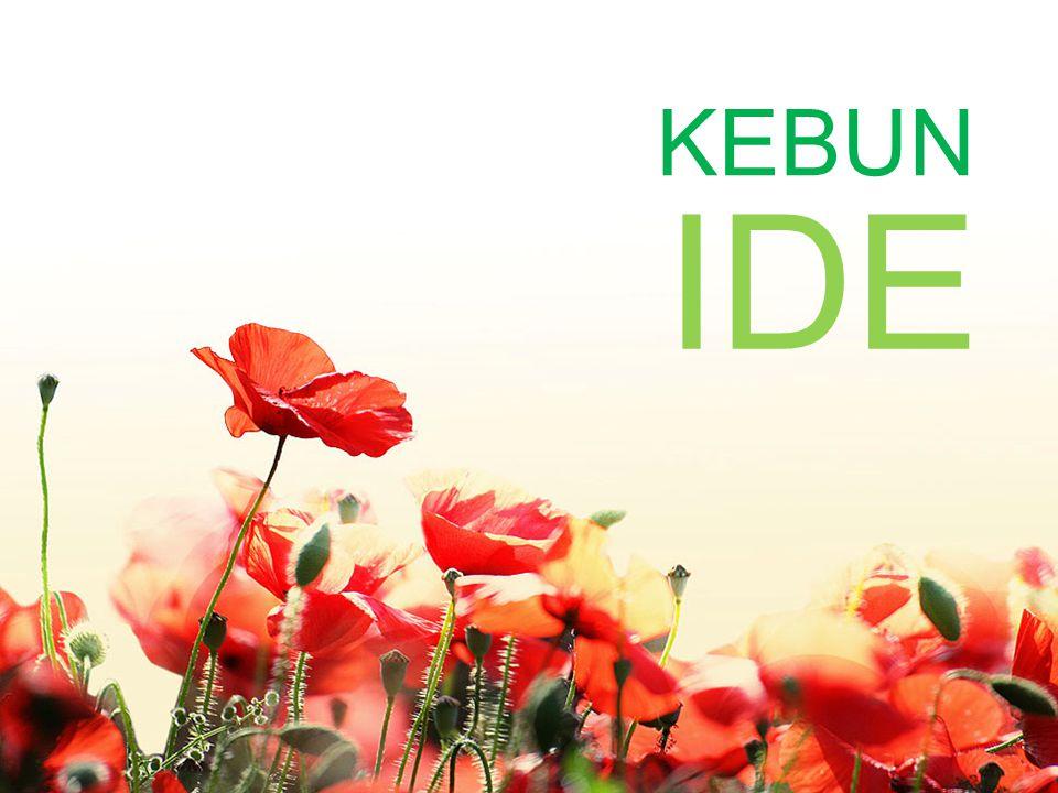KEBUN IDE