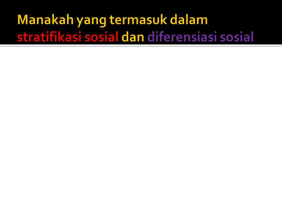 Manakah yang termasuk dalam stratifikasi sosial dan diferensiasi sosial