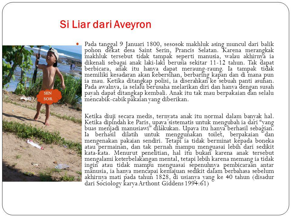 Si Liar dari Aveyron