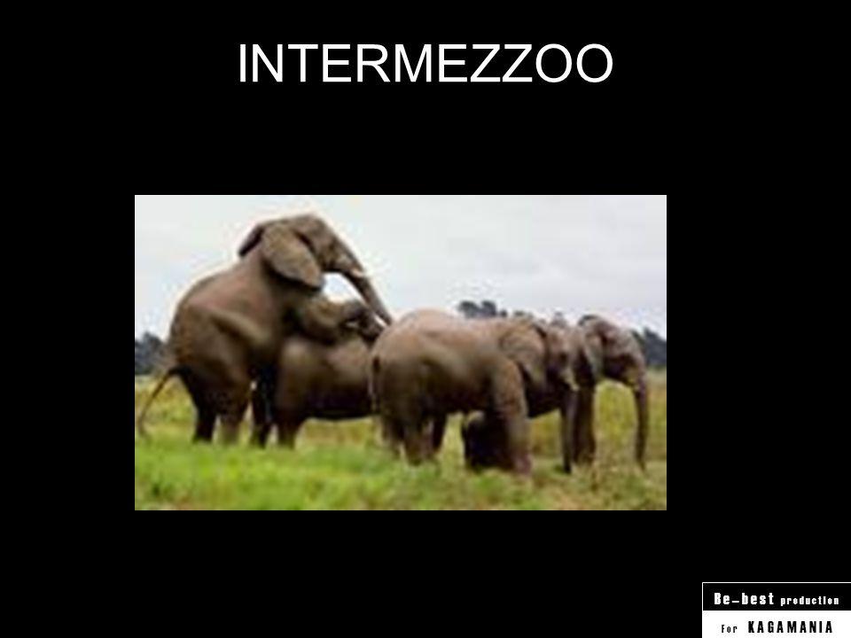 INTERMEZZOO