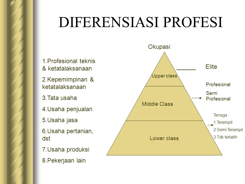 DIFERENSIASI PROFESI Okupasi 1.Profesional teknis & ketatalaksanaan