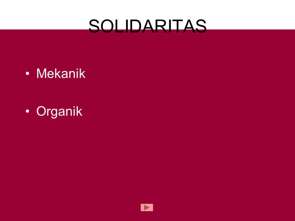 SOLIDARITAS Mekanik Organik