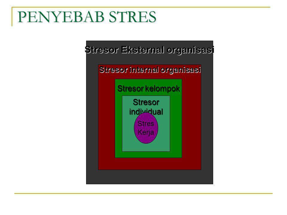 Stresor Eksternal organisasi Stresor internal organisasi
