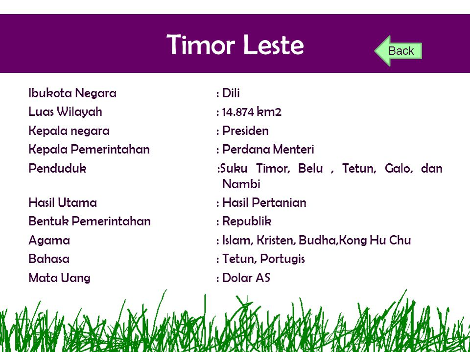 Timor Leste Back.