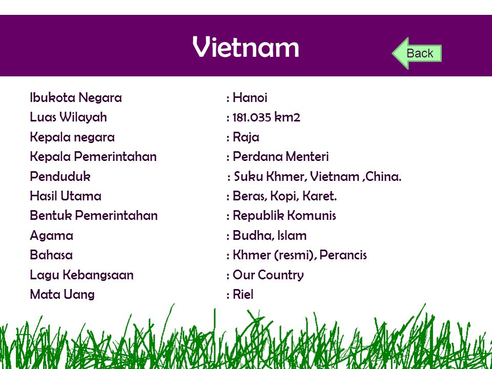 Vietnam Back.