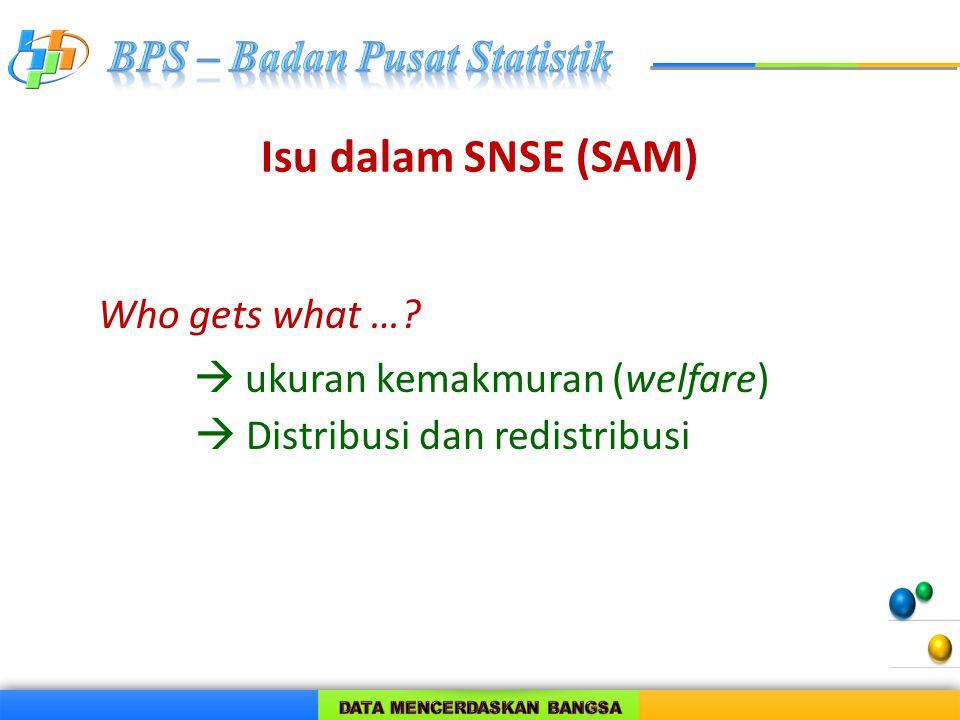 Isu dalam SNSE (SAM) Who gets what …  ukuran kemakmuran (welfare)  Distribusi dan redistribusi