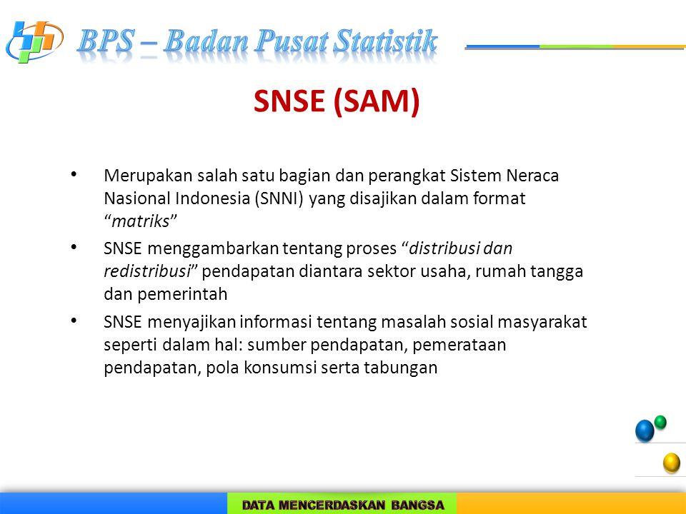 SNSE (SAM) Merupakan salah satu bagian dan perangkat Sistem Neraca Nasional Indonesia (SNNI) yang disajikan dalam format matriks