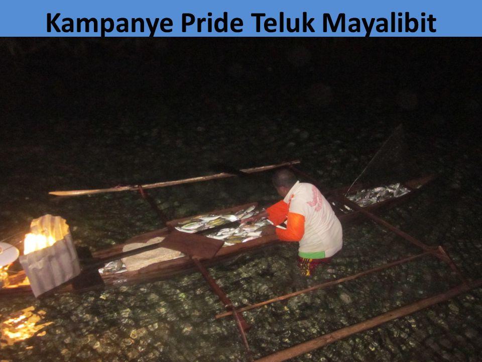 Kampanye Pride Teluk Mayalibit